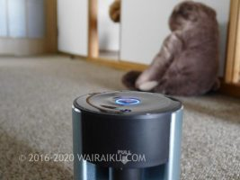 犬がいる部屋でアロマを楽しむなら気化式ディフューザーがおすすめ!