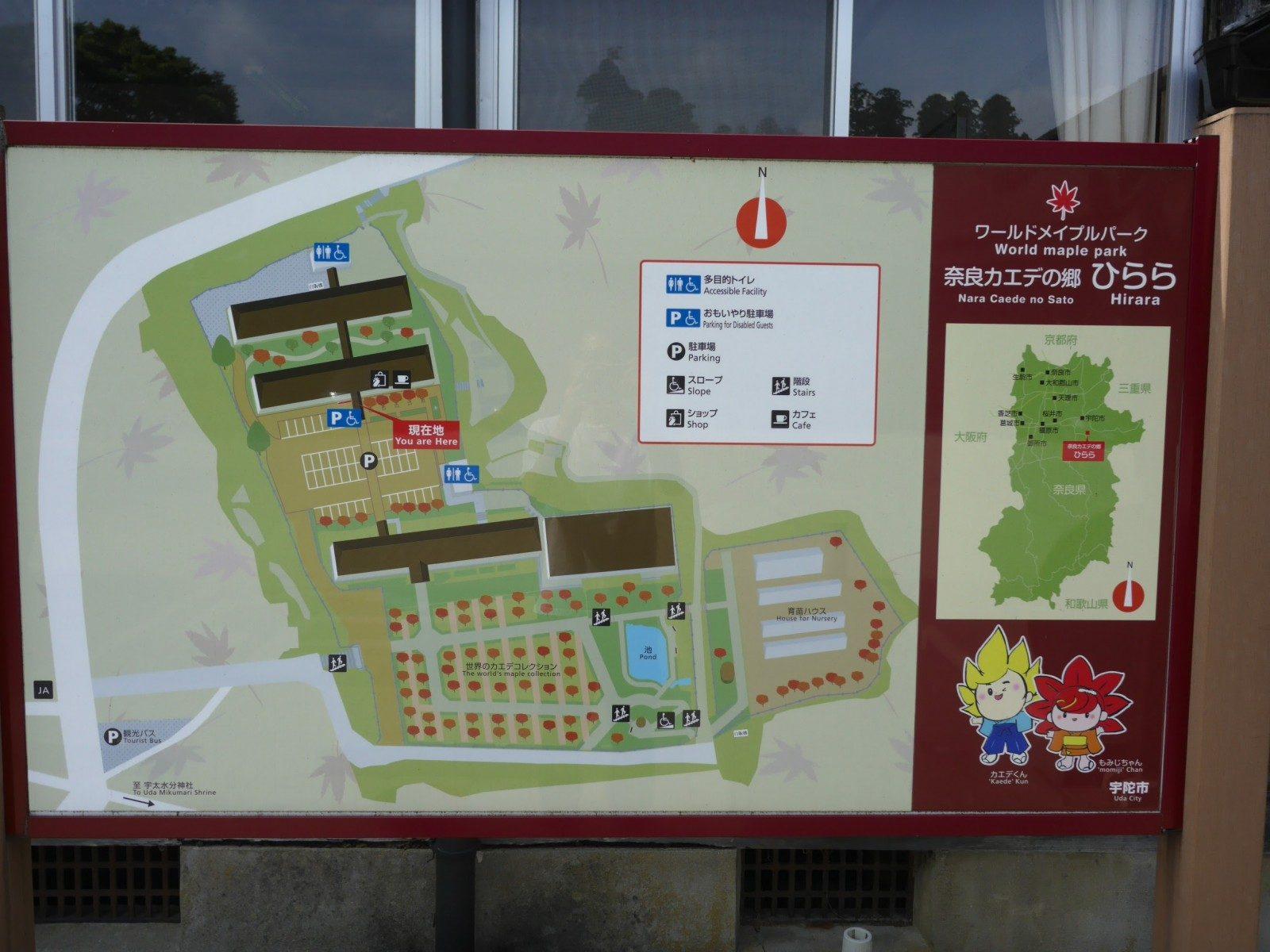 奈良県宇陀市おすすめカフェ!ワールドメイプルパーク「Cafeカエデ」で給食ランチはどう?