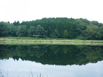美しい水鏡と神秘的な空気を纏う龍王ヶ渕 奈良県宇陀市