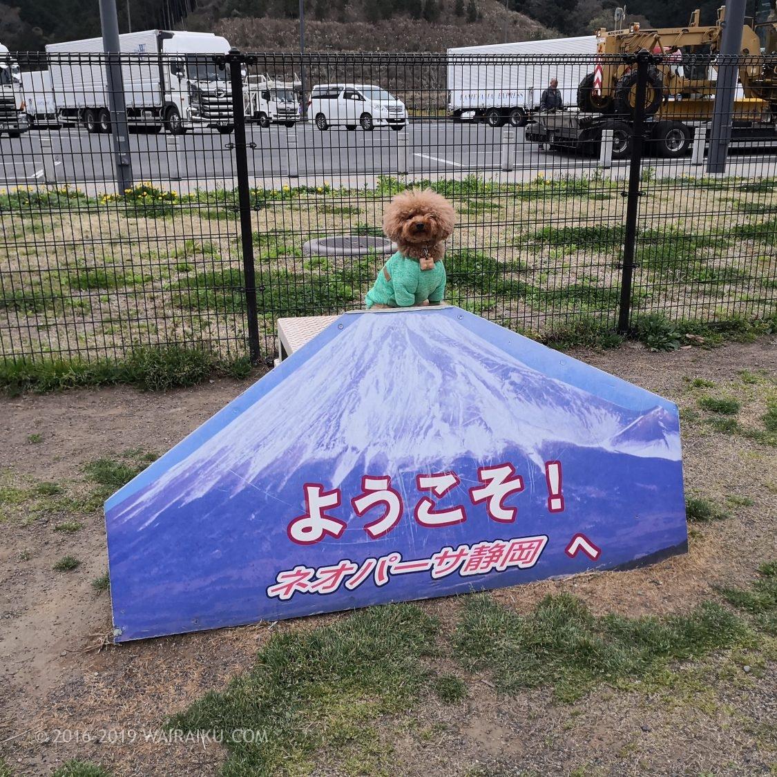 ネオパーサ静岡(下り)ドッグラン