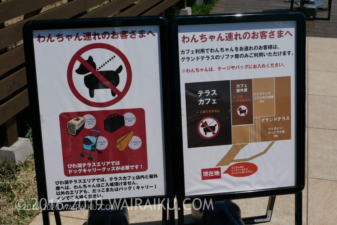 琵琶湖テラス 犬