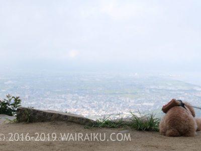 高屋神社 天空の鳥居