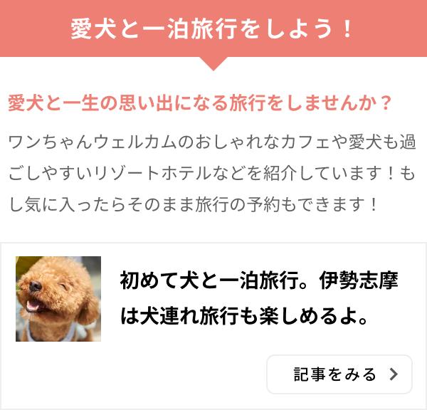 ズボラ旅 伊勢志摩 犬連れ