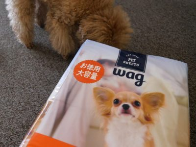 [Amazonブランド]Wag ペットシーツ 薄型 レギュラー 1回使い捨て 300枚