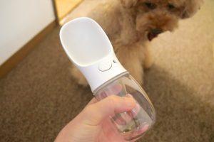 ペット 携帯 給水ボトル