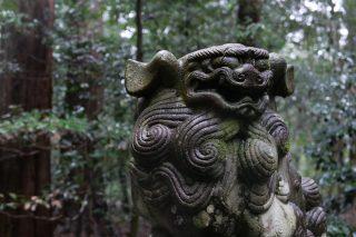 椿大神社 狛犬