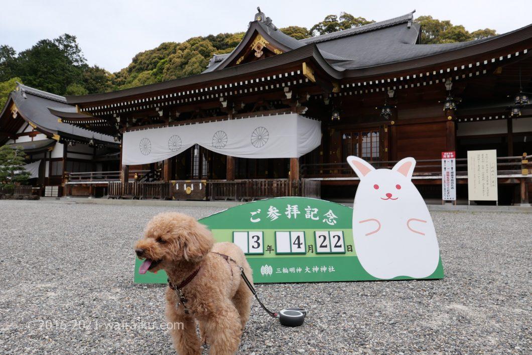 大神神社 犬