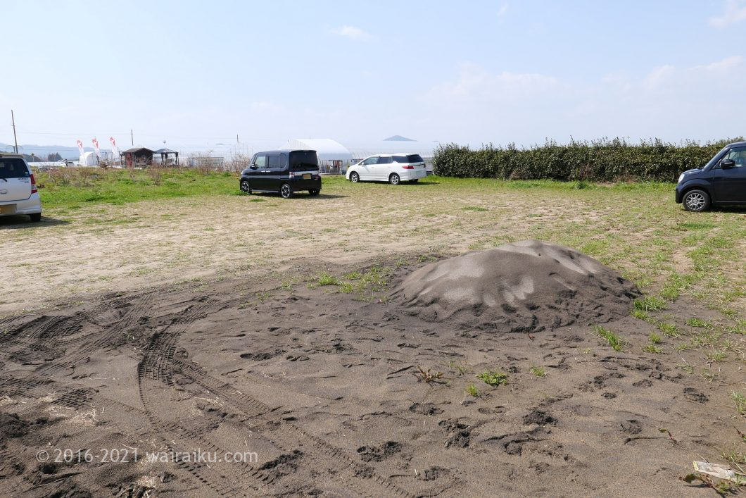 イチゴ狩り ペット同伴 関西 高野いちご園
