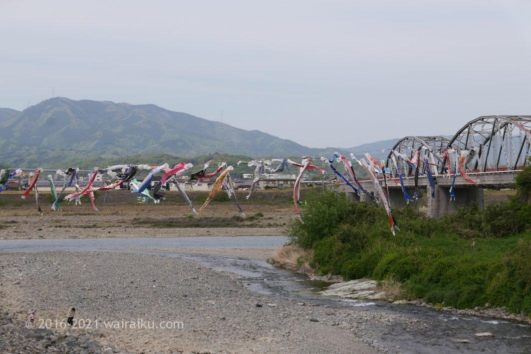 鯉のぼりの丹生川渡し