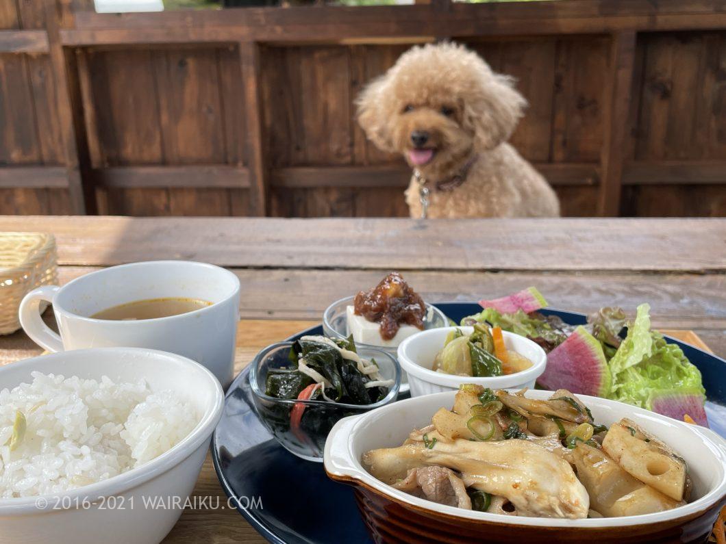 ユノカフェ 三重県名張市 ペット同伴可のカフェレストラン